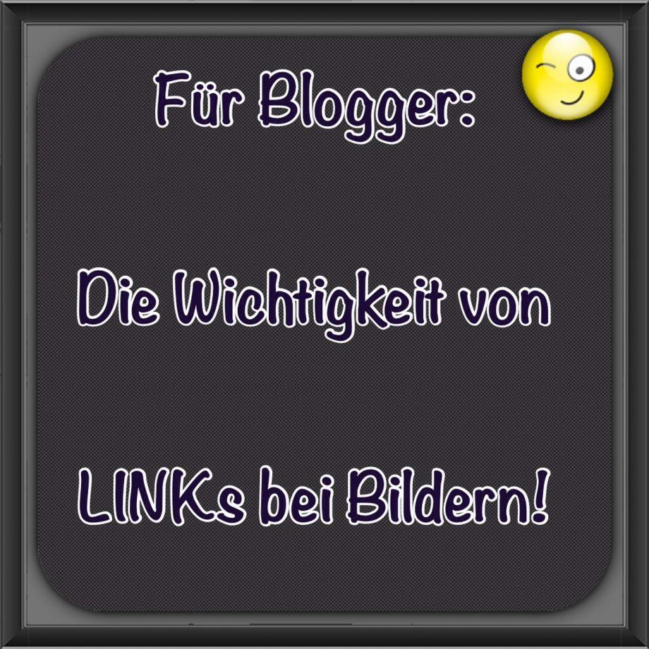 Die Wichtigkeit von Bildbeschriftungen und Links bei Blogartikeln!