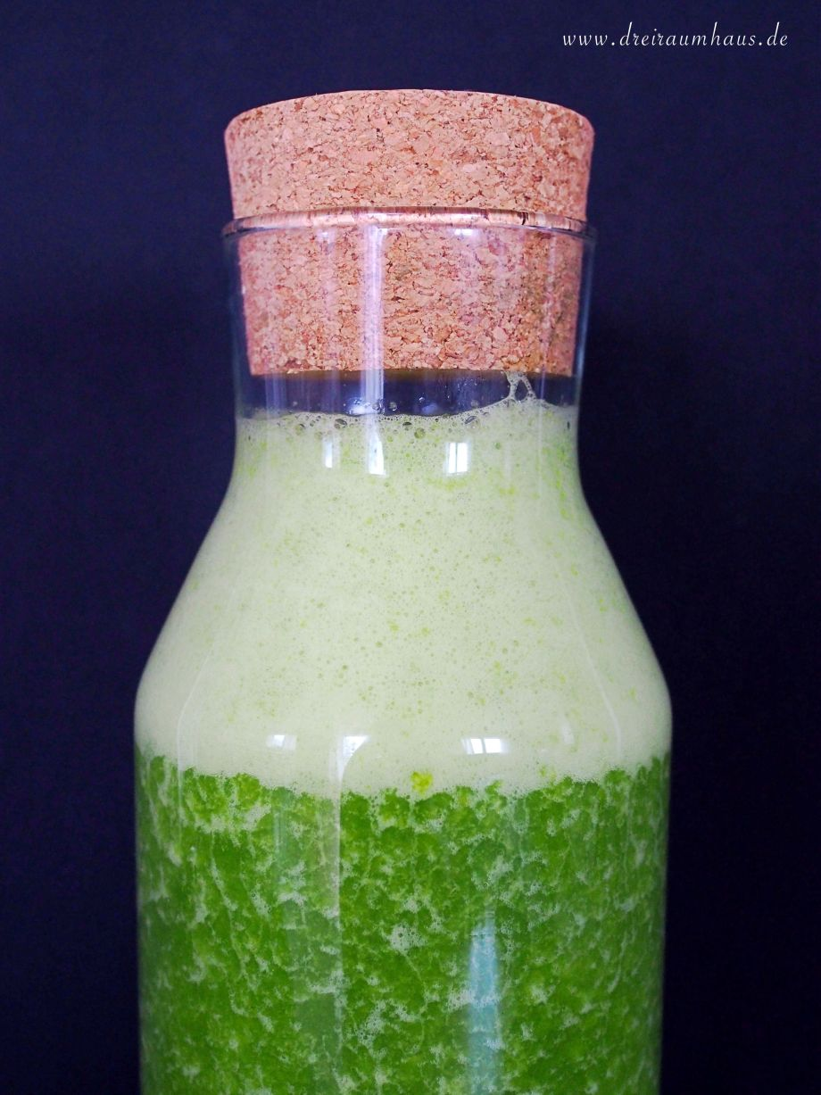 dreiraumhaus dowabo steel bottle trinkflasche green smoothie