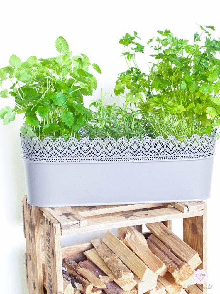 dreiraumhaus-montagsmampf-gurkensalat-mit-kohlrabi-food-rezept-lifestyleblog-leipzig-18