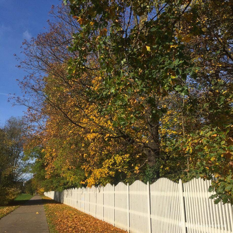 mein Wochenrückblick aus meinem Bloggerleben auf meinem Lifestyleblog aus Leipzig