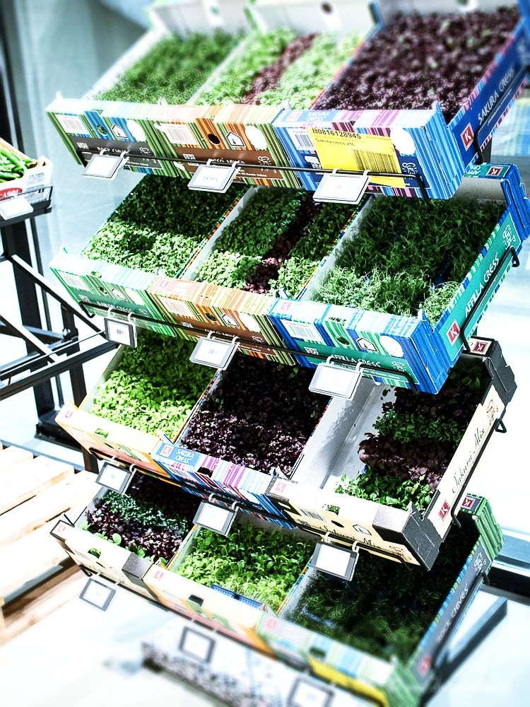 dreiraumhaus-frischeparadies-leipzig-delikatessen-leipzig-lifestyleblog-leipzig-food-shopping-leipzigblog