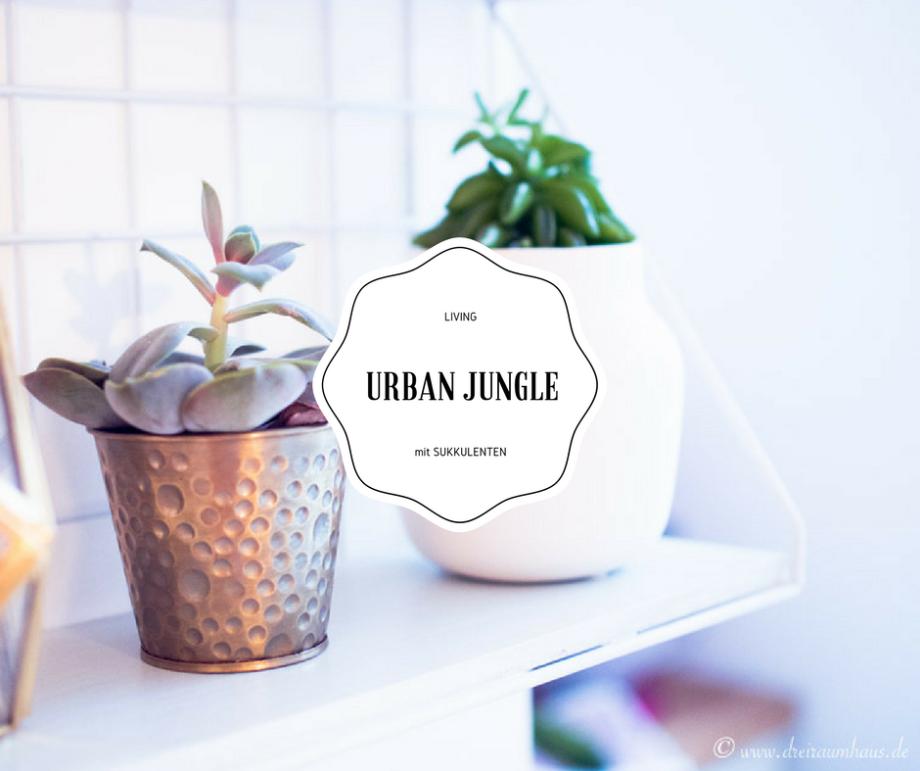 LIVING: Ein klitzekleiner Urban Jungle für jede Wohnung!