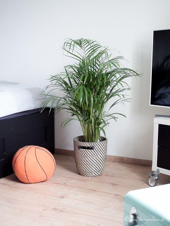 LIVING: Mama, Ich Wünsch Mir Eine Pflanze! Wie Richtet Man Das Zimmer Oder  ...