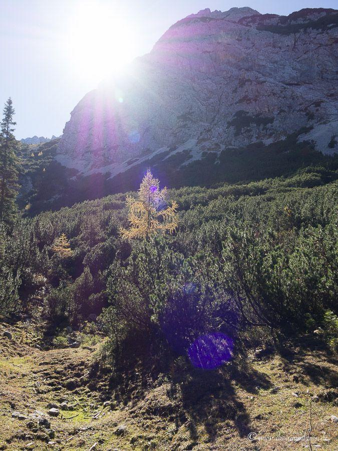Spontaner Kurzurlaub in Österreich? Tipps für Unterkünfte und Aktivitäten in der Zugspitzarena!