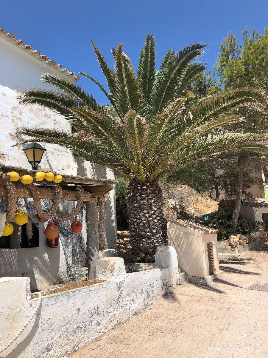 Mallorca – unser Ausflug nach Cabrera und zur blauen Lagune mit marcabrera!