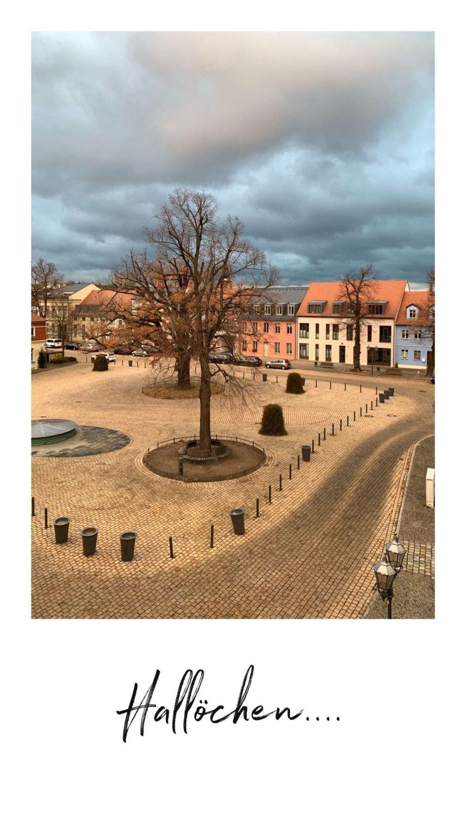 TIPPS und GRUNDREGELN für das Einrichten und Dekorieren von kleinen Wohnräume! Mit dem Geberit Dusch WC im Flying Space von Schwerer Haus in Werder Havel!