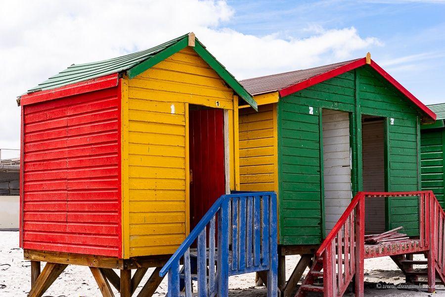 Download Freebie - Südafrika #1 oder warum ich die Dame bei der Einreise anschreien wollte!