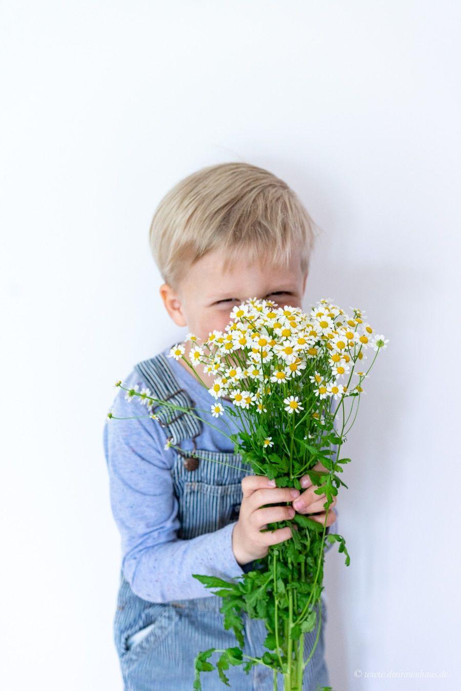 Geben wir die Emanzipation ab, wenn wir Mütter werden? Kamillan - natürlicher Ersthelfer!