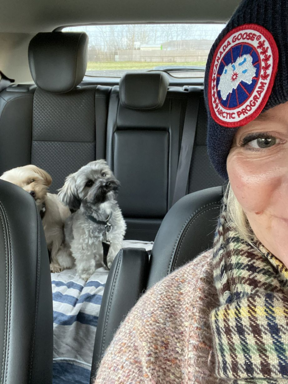Warum futalis das beste Hundefutter für Hugo & Bommel ist