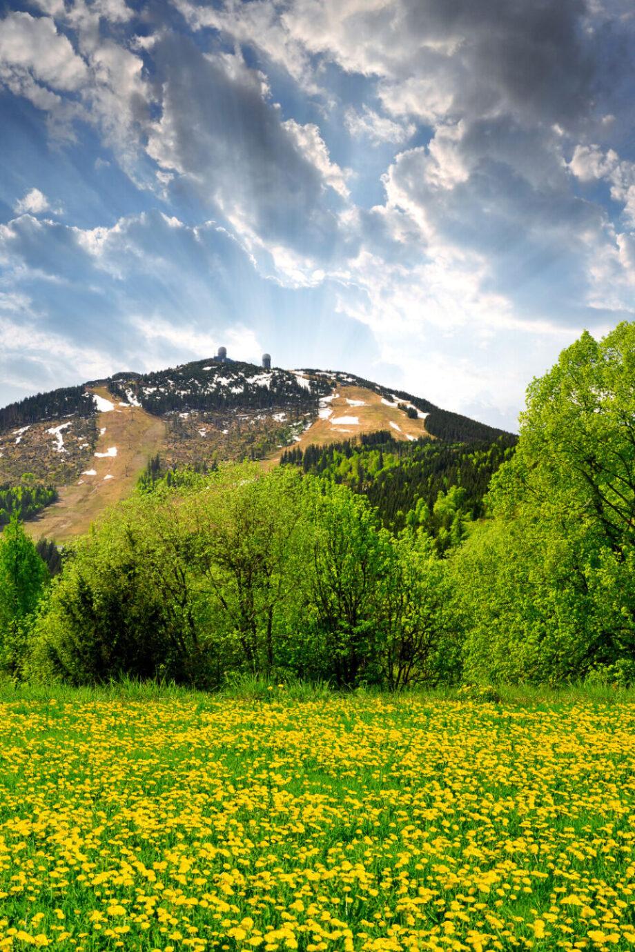 Der Bayerische Wald - Sommerurlaub für die Familie in Perfektion!