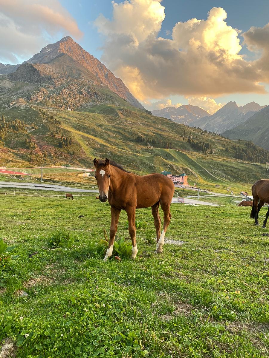 #Koffergeschichten #9 aus Tirol... Kühtai, Innsbruck, Stuttgart und ein volles Herz...