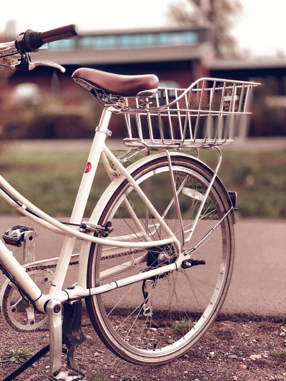 Welches E-Bike könnte das richtige für mich sein?